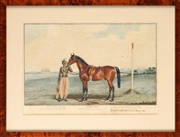 master tom - portrait of a bay racehorse by edwin (of bath) loder