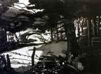 sunlit field by pamela leonard