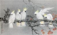 鹦鹉 by lin hukui