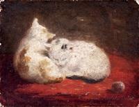 le repos des chatons by emilie leleux