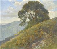 frühlingswiese am berghang by gioachimo galbusera