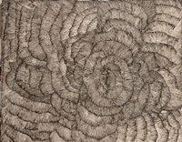 aluta by kngwarreye lily sandover