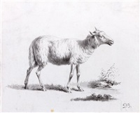 mouton (study) by jean-jacques de boissieu