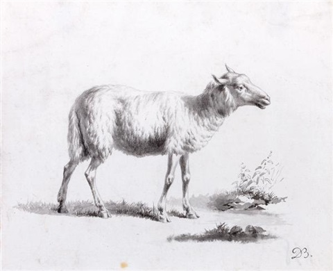 mouton study by jean jacques de boissieu