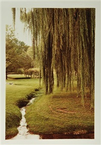 three views of a garden, possibly knoxville (3 works) by william eggleston
