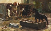 fve dogs watching a furious dachshund by simon ludvig ditlev simonsen