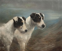 wire haired fox terriers by lilian cheviot