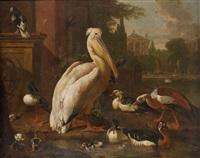 pélican et canards dans un parc by melchior de hondecoeter