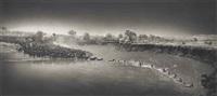zebras crossing river, maasai mara by nick brandt