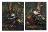 pinson des arbres (+ roitelet dans des paysages; pair) by johann adalbert angermayer