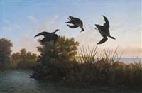 duck shooting by albert bierstadt