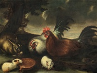 decorative fowl by franz werner von tamm