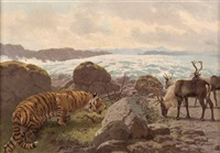 tiger pirscht sich an rentiere heran by franz xaver jung-ilsenheim