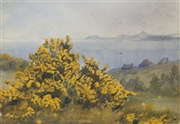 view from the baily, looking south to wicklow by helen colville