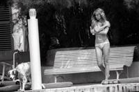 brigitte bardot sur le ponton de la madrague à saint tropez, le 14 juin 1976 by francis apesteguy