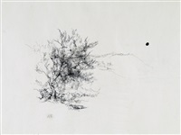 tree in a landscape by anna ticho