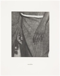 details (portfolio of 21 works) by lorna simpson