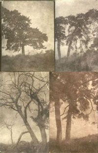 arbres (study)(5 works, various sizes) by charles edouard (baron de crespy) le prince