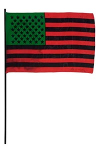 african-american flag by david hammons