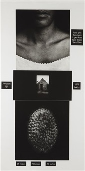 counting by lorna simpson