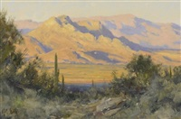 the view north from the mcdowell foothills by matt(hew) read smith