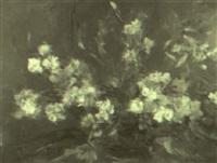 flores by ricardo macarrón