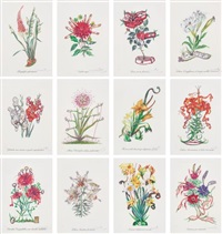 surrealistic flowers (12 works) by salvador dalí