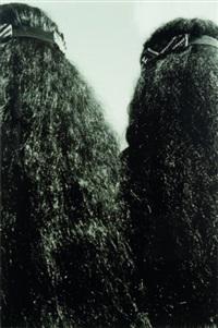 turangawaewae by alan miller