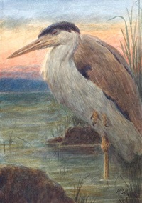 heron at sunset (+ another; 2 studies) by henry stacy marks