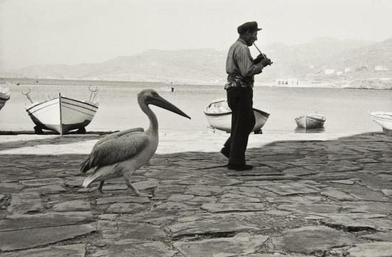 le pelican de mykonos greece by rené burri