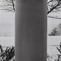 winter landscape by robert mapplethorpe