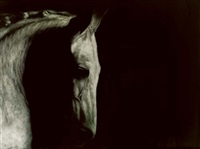 grey horse by paddy lennon