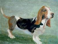 bassett hound by jeanne davies
