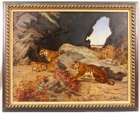 crouching tiger observing a mother and her cubs by e. baily hilda