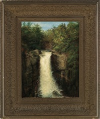 waterfall by homer dodge martin