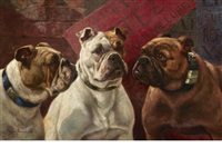 three bulldogs by charles h.d. boland de spa