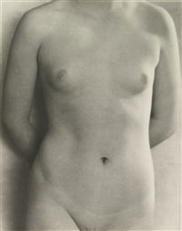 torso, san francisco by dorothea lange