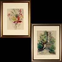 hawaiian waterfall (+ tropical flowers, hawaii, smllr; 2 works) by mabel alvarez