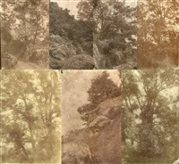 arbres et rochers (study)(7 works, various sizes) by charles edouard (baron de crespy) le prince