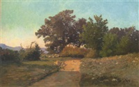 le chemin ensoleillé by jacinthe pozier