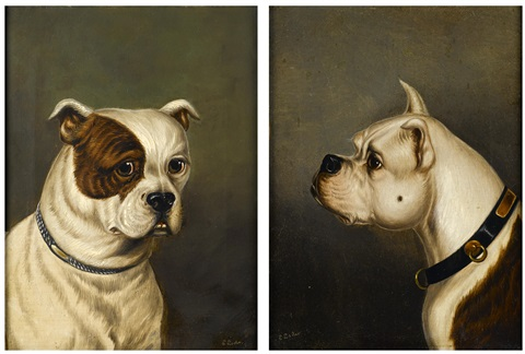 two bulldogs 2 works by james of bath loder