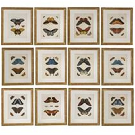 butterflies set of 12 by pierre cramer