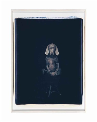 potted by william wegman