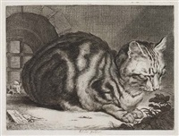 the large cat by cornelis de visscher