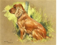 a seated spaniel by arthur wardle