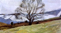 winter tree, glenarm by alexander randall mark mcdonnell dunluce