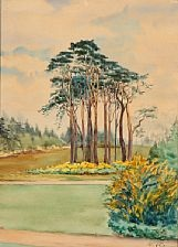 view of a park by olga (grand duchess) alexandrovna