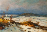 winterlandschaft by ota bubenicek