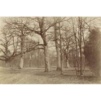 forest scene, bois de boulogne by olympe (count) aguado