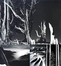 paysages de montagnes (10 works) by david muench